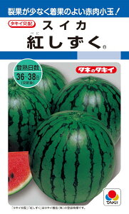 タキイ種苗 スイカ 紅しずく 約9粒【郵送対応】