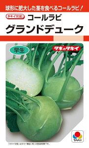 タキイ種苗 コールラビ グランドデューク 1.6ml【郵送対応】