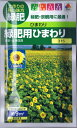 タキイ種苗 緑肥用ひまわり 60ml 【郵送対応】