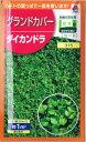 タキイ種苗 ダイカンドラ 20ml(約1m2分) 【郵送対応】
