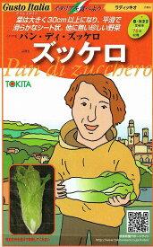トキタ種苗 グストイタリア ズッケロ (ラディッキオ) 約50粒 【郵送対応】