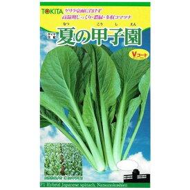 トキタ種苗 コマツナ 夏の甲子園 10ml【郵送対応】