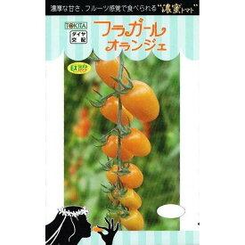 トキタ種苗 ミニトマト フラガールオランジェ 約8粒 【郵送対応】