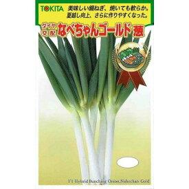 トキタ種苗 ネギ なべちゃんゴールド 5ml 【郵送対応】