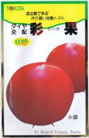トキタ種苗 大玉トマト 彩果(さいか) 約30粒 【郵送対応】