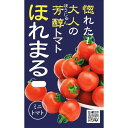 渡辺農事 ミニトマト ほれまる 約15粒【郵送対応】