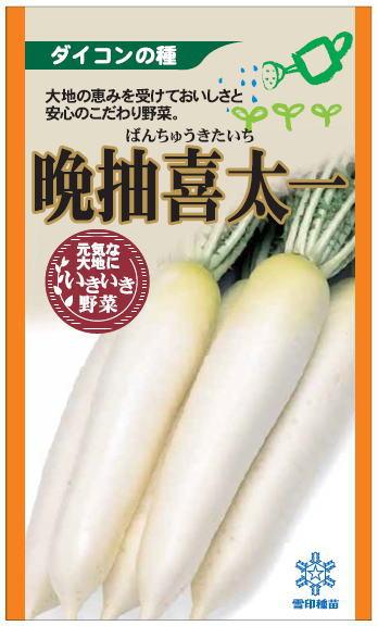 雪印種苗 大根 晩抽喜太一 5ml 【郵送対応】