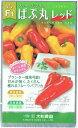大和農園 フルーツパプリカ ぱぷ丸レッド 約8粒【郵送対応】