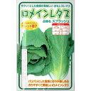横浜植木 ロメインレタス スプラッシュ ペレット種子約100粒【郵送対応】