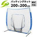 トスバッティングネット ピッチングネット 野球 硬式 軟式 ソフトボール 練習 200cm×200cm 防球ネット GP ジーピー