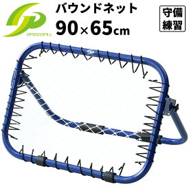 GP (ジーピー) 野球 守備 投球 練習用ネット バッティングネット バウンドネット 90cm×65cm ブルー 一部地域送料無料