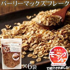 スーパー大麦 バーリーマックス1.2kg(200g×6袋) 送料無料 食物繊維が豊富 レジスタントスターチ ハイレジ 腸活 ダイエットに オートミール シリアル フレーク
