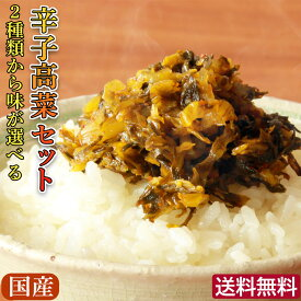 【送料無料】選べる辛子高菜セット(3袋セット)2種類から選べる100g×3袋 国産 辛子たかな/からし高菜/高菜炒め/からかもん/うまかもん/ふくや