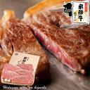 ギフト 飛騨牛 サーロインステーキ 計850g(170g位×5枚)ステーキソース付【化粧箱入】送料無料 《ポッキリ価格》贈…