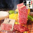 ギフト 飛騨牛 焼肉用 かたロース肉 500g(3〜4人前) 【化粧箱入】送料無料 《ポッキリ価格》贈答品 牛肉 和牛 御歳暮 …