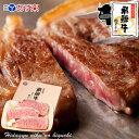 お歳暮 飛騨牛 サーロインステーキ 計500g(165g位×3枚)ステーキソース付 【化粧箱...