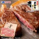 お歳暮 飛騨牛 サーロインステーキ 計680g(170g位×4枚)ステーキソース付【化粧箱入...