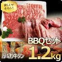 限定!バーベキュー1.2kgセット!飛騨牛カルビ200g/もも・かた肉200g・国産豚ばら肉300g/ロース肉300g・ポーランド産…