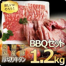 限定!バーベキュー1.2kgセット!飛騨牛カルビ200g/もも・かた肉200g・国産豚ばら肉300g/ロース肉300g・ポーランド産厚切り牛タン芯200g