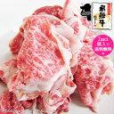 飛騨牛 切り落とし肉 350g (冷凍) 訳あり お試し 【2パック以上購入で 送料無料 】こま切れ 切り落とし 切り落し 切…
