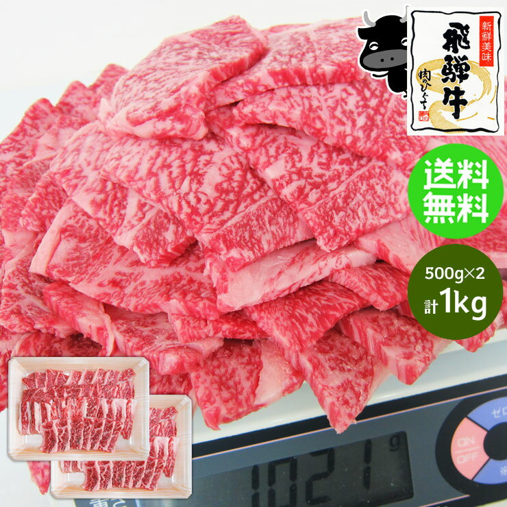 メガ盛り!飛騨牛 カルビ焼肉用1kg(500g×2)牛肉 セット/焼肉/BBQ/焼肉/バーベキュー 食材 材料/焼肉/