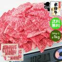 《メガ盛り》 飛騨牛 牛カルビ 焼肉用 500g×2パック(合計1kg) 送料無料1キロ 1kg カルビ 焼肉 BBQ バーベキュー 食…