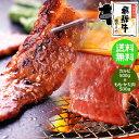 飛騨牛 カルビ 500g & もも・かた(赤身) 500g 合計 1kg 焼肉用 送料無料《メガ盛り》 ハーフ&ハーフ 1キロ BBQ バ…