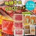 BBQ2.1kgセット 飛騨牛 国産豚肉 国産若鶏 ホルモン フランク バーベキューセット 約6〜8人用 送料無料 まとめ買い BB…