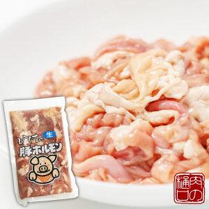 豚ホルモン 生 300g 肉のひぐちオリジナル国産豚肉 冷凍 冷凍食品 ホルモン BBQ バーベキュー 焼肉 キャンプ 食材 肉 モツ もつ