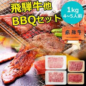 バーベキュー 肉 焼肉 セット 飛騨牛 国産豚肉 肉 バーベキューセット 1kg (冷凍) 約4〜5人分 送料無料焼き肉セット カルビ もも かた 赤身 豚バラ 豚ロース BBQセット お中元 小分け 福袋 詰め合わせ