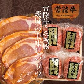 父の日ギフト お中元 食べ物 肉 ハンバーグ 送料無料 常陸牛 100g×4個 豚肉 ロース みそ漬け 4枚 詰め合わせセット 味噌漬け 内祝い お返し メッセージカード 茨城 水戸