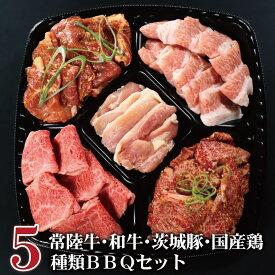 バーベキュー bbq 焼肉 セット 送料無料 イイジマ BBQプレート レギュラー 5種 計850g 3〜4人前 常陸牛 カルビ 和牛 味付 国産 若鶏 豚 食べ比べ おうち時間 在宅 自宅用