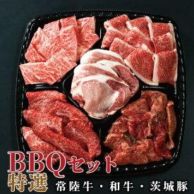 バーベキュー bbq 焼肉 セット 送料無料 イイジマ BBQプレート 特選 3〜4人前 830g 食べ比べ 常陸牛 カルビ 和牛味付 茨城豚ロース バーベキュー おうち時間 自宅用