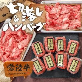 【300円OFFクーポン】常陸牛 ハンバーグ 切り落とし 400g 8個 送料無料 自宅用 お試し 牛肉 ブランド牛 国産 和牛