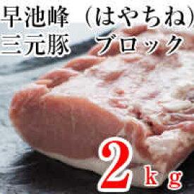 【豚肉】【業務用】【お土産】【塊】岩手県産早池峰三元豚ロースブロック2k
