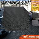 大判 厚手 ジョイント トレーニングマット 60×60×1.2cm 6枚セット | ジムマット 筋トレ ダンベル バーベル トレー…