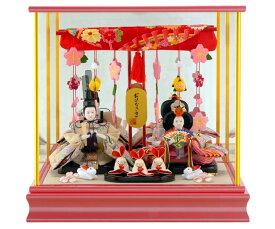 雛人形 特選 ひな人形 雛 ケース飾り 親王飾り 特選ひな人形 御雛 ピンク 【2020年度新作】 h253-mi-ks-h312pp