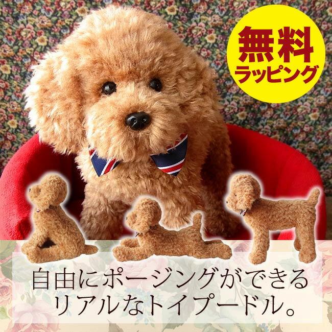 ぬいぐるみ 犬 リアル トイプードル【実物大トイプードルのぬいぐるみ(アプリコット)】簡易無料ラッピングでお届けします。