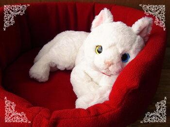 【ひざねこ(白猫オッドアイ)】猫のぬいぐるみ◎簡易ラッピング(無料)でお届けします。