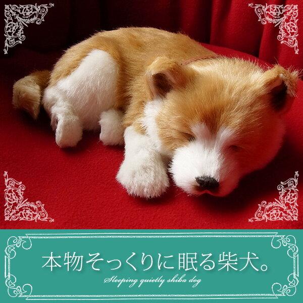 【本物そっくりに眠る柴犬のぬいぐるみ】パーフェクトペット|犬のぬいぐるみ|動くぬいぐるみ|誕生日|クリスマス|プレゼント|ギフト|お見舞い|ペットロス