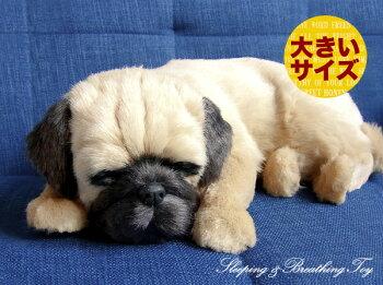 新商品《6月上旬販売予定》【本物そっくりに眠るパグ(大)のぬいぐるみ】パーフェクトペット|犬のぬいぐるみ|動くぬいぐるみクリスマス|誕生日|プレゼント|ギフト|お見舞い