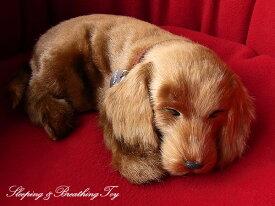 【パーフェクトペット ダックスフンド スムース(レッド) ぬいぐるみ】犬 イヌ いぬ ぬいぐるみ リアル 本物 そっくり ペット