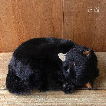 本物そっくりに眠るぬいぐるみパーフェクトペット【黒猫】リアル猫動くぬいぐるみギフトプレゼント誕生日クリスマスお見舞いペットロス