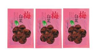 [山豊] 漬物 広島菜 梅白菜 100g×3袋セット /広島県 漬物 漬菜 広島菜 白菜 国産