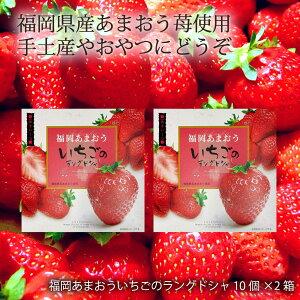 【お買い得セール開催中!】福岡 あまおう いちご ラング 大邦物産 福岡あまおういちごのラングドシャ 10個×2