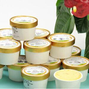 アイスクリーム ソフトクリーム お取り寄せスイーツ sweets かぼちゃ かぼちゃアイス スイーツ 有機 15個 株式会社西ノ原商事