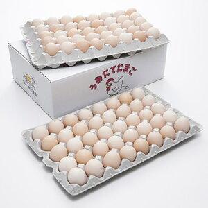 スマイルBOX 5kg 有限会社幾見養鶏 静岡県 静岡・富士市で飼育方法、水、エサにこだわってヒナから育てた純国産鶏卵。