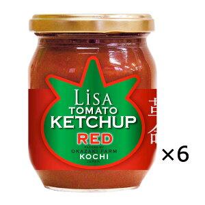 リサトマト ケチャップ レッド 6個 トマトケチャップ スパイシー 調味料 高知県産 完熟トマト トマト 国産 高知 おかざき農園