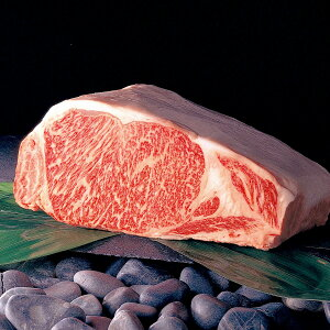 送料無料 山形牛ステーキ モモ肉 480g ステーキ 山形県産 赤身 冷蔵 バーベキュー 国産 牛肉 和牛ステーキ 山形農業協同組合 山形県
