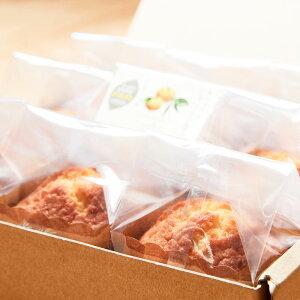 スイーツ じゃばらカップケーキセット 125g×9個 焼きたてのパンサンタ 和歌山県